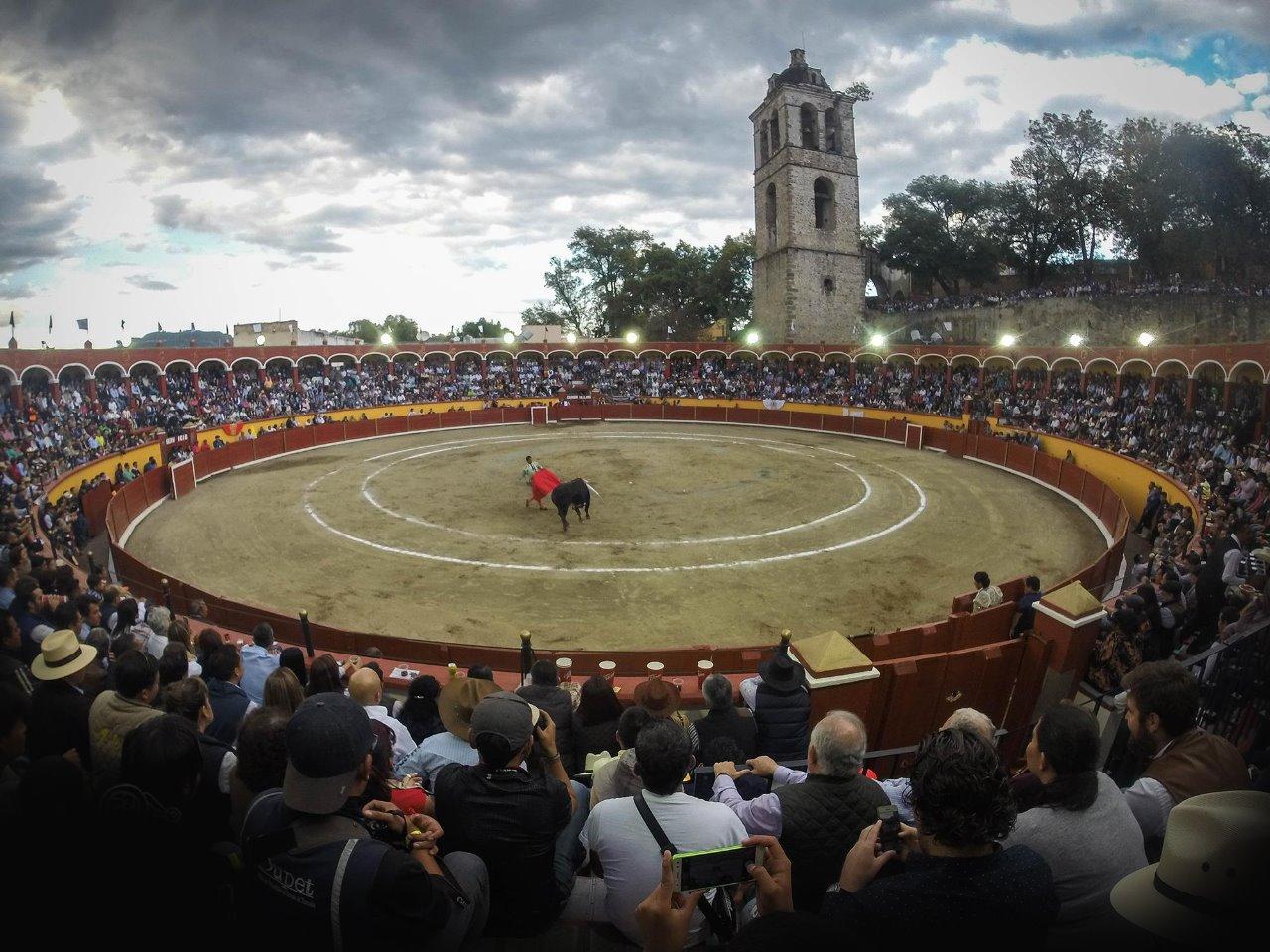 Festival Juego de Pelota (2)-1